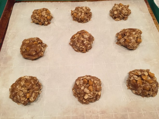 oatmeal cookie unbaked