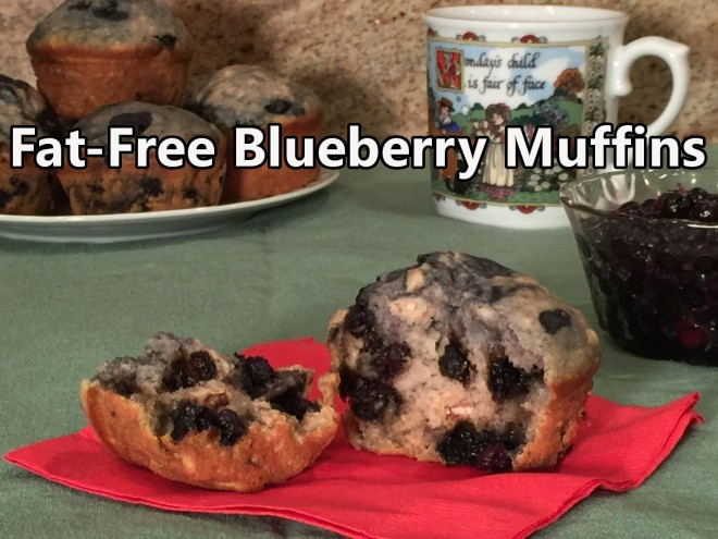 blueberry muffin nonfat text2