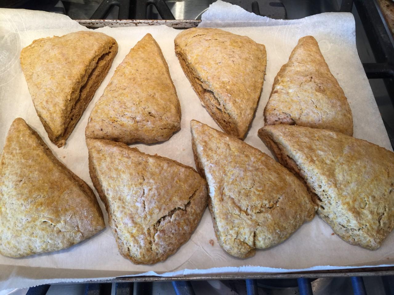pumpkin scones7
